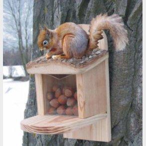 Egernhuse, insekthoteller osv.