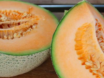 Melon, Squash osv.