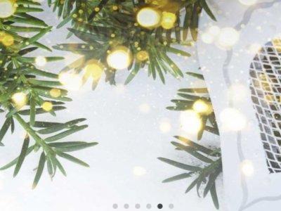 Grønt til jul